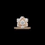 Orion earrings, PE17061-ORD_V